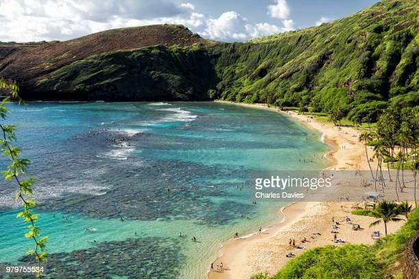 sandy coastline and green cliffs, hanauma bay, oahu, hawaii, usa - oahu stock pictures, royalty-free photos & images