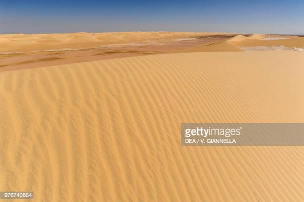 60 Top Western Sahara Desert Pictures, Photos and Images