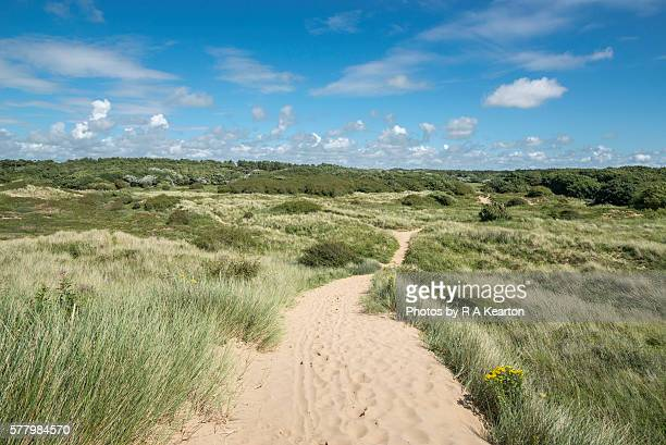 sandy footpath across dunes on the sefton coast - merseyside stock pictures, royalty-free photos & images
