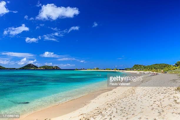 sandy island, granada - paisajes de isla de  granada fotografías e imágenes de stock