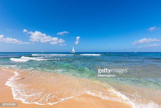 sandy lane beach - barbados stock pictures, royalty-free photos & images