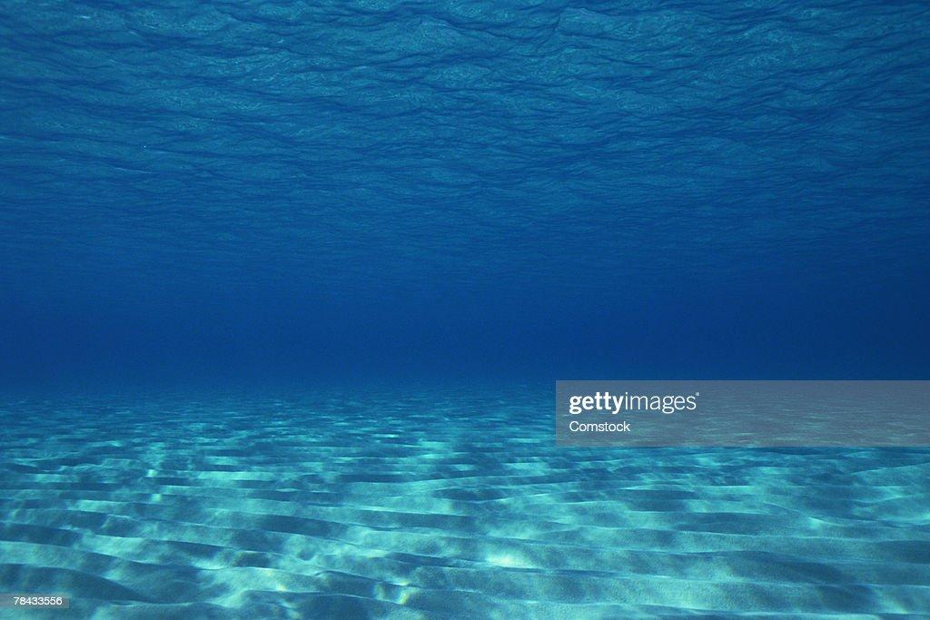 Sandy ocean floor , Great Barrier Reef , Australia : Stock Photo