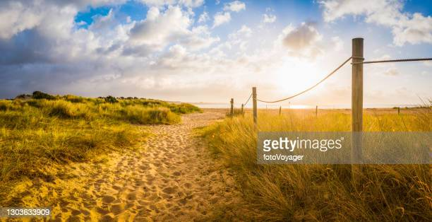 sandy path through summer dunes to idyllic ocean beach sunrise - british culture stock pictures, royalty-free photos & images