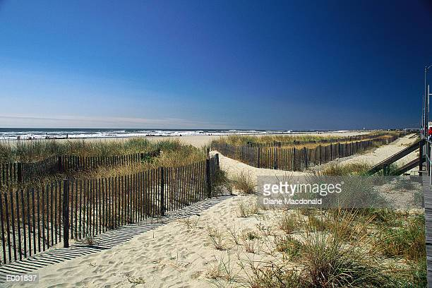sandy pathway to beach - ocean city new jersey stock photos and pictures