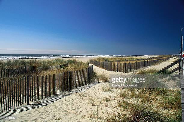 Sandy pathway to beach