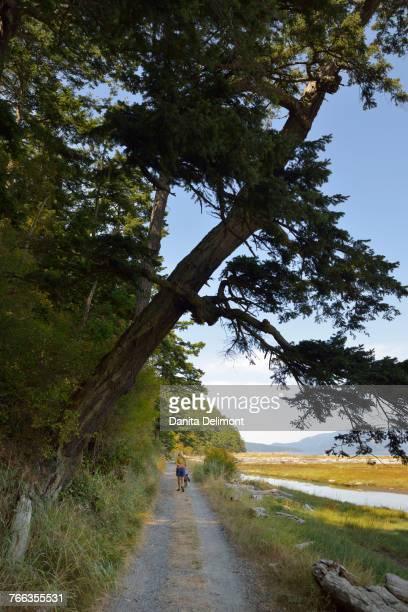 Sandy trail along marsh at Spencer Spit, Lopez Island, San Juan Islands, Washington State, USA