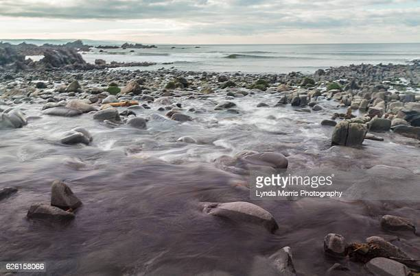 Sandymouth Beach, Devon - geology