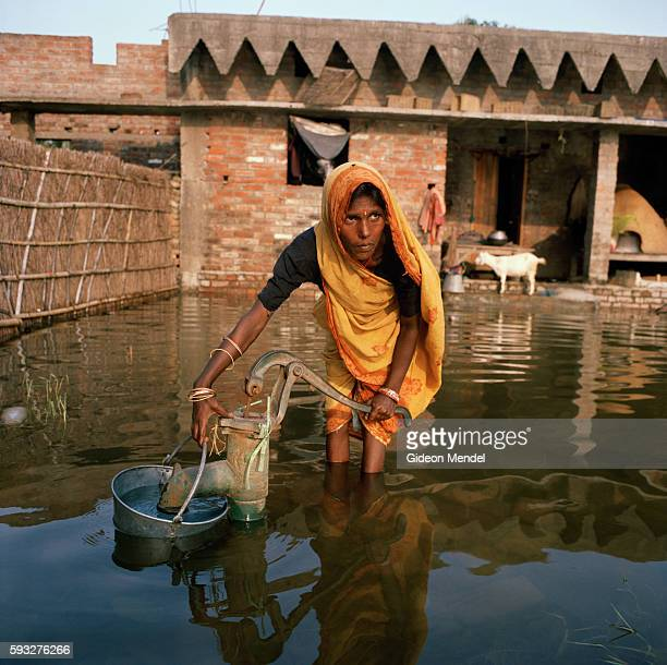 Sangeeta Devi pumps water with a hand pump in the flooded village of Chajan Mania near Muzaffarpur The floodwaters were slowly receding and the pump...