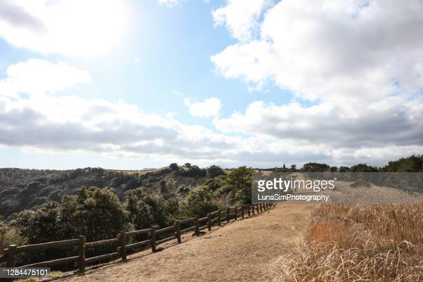 sangumburi crater hiking path, volcanic island, volcano in autumn - south korea stock pictures, royalty-free photos & images