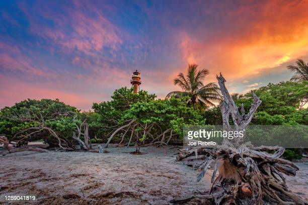 sanibel lighthouse - fort myers stock pictures, royalty-free photos & images