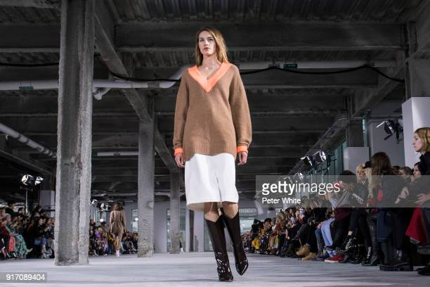 Sanne Vloet walks the runway at Tibi Fashion Show during New York Fashion Week at Pier 17 on February 11 2018 in New York City