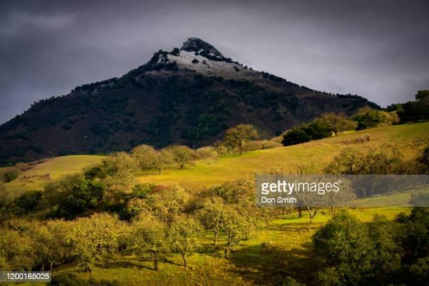 santa ana peak, diablo and oaks - don smith stock pictures, royalty-free photos & images