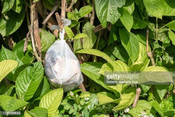 santa clara, cuba, disposing of garbage in the city - キューバ サンタクララ ストックフォトと画像