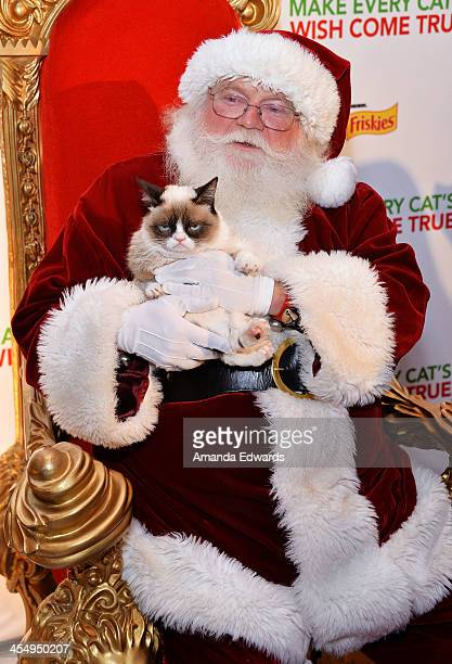 Santa Claus and Grumpy Cat attend the Celebrity Internet Cat Super Group holiday event at Capitol Records Tower on December 10 2013 in Los Angeles...