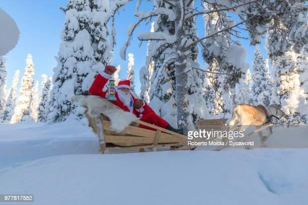 santa claus on reindeer sleigh in the snowy forest, ruka (kuusamo), northern ostrobothnia region, lapland, finland - babbo natale slitta foto e immagini stock