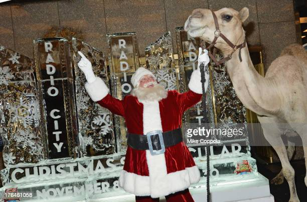 Santa Claus poses for a picture with a camel as Radio City Christmas Spectacular Celebrates Christmas In August at Radio City Music Hall on August 13...
