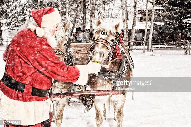 santa feeding green apples to a team of horses - country christmas stock pictures, royalty-free photos & images