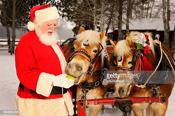 santa feeding his team of horses green apples - christmas horse stock pictures, royalty-free photos & images