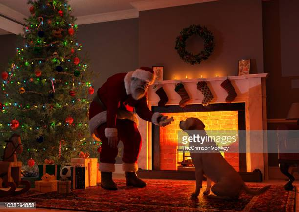 santa giving a present to a dog - christmas dog stock pictures, royalty-free photos & images