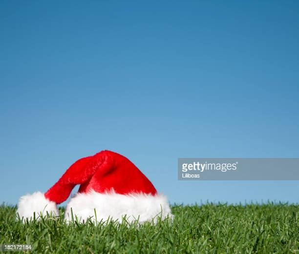 Santa Hat in the Grass
