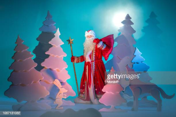 santa is walking in fairytale winter forest - russian culture stock pictures, royalty-free photos & images