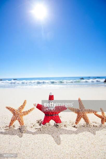 Santa Star Fish