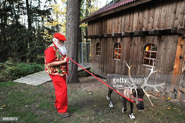 Santa student Jerry Owens of New Albany Indiana walks a reindeer in the back yard of Santa Claus school Dean Tom Valent during the Charles W Howard...