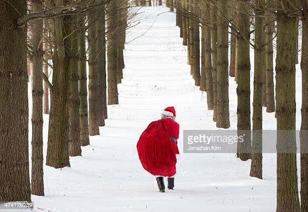 Santa walks in the woods