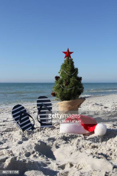santa was here. a decorated christmas tree on beach with santa hat and flip-flops - marie lafauci stock pictures, royalty-free photos & images