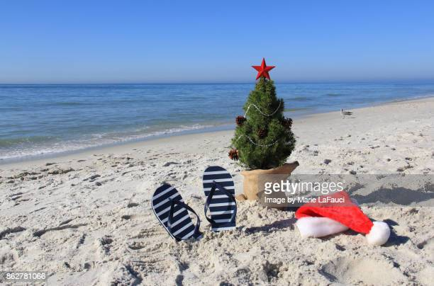 Santa was here. Decorated Christmas tree on the beach with Santa hat and flip-flops