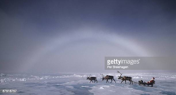 Santa with three reindeer to The North Pole