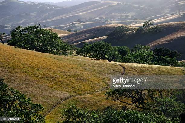 santa ynez valley landscape - los olivos california stock pictures, royalty-free photos & images