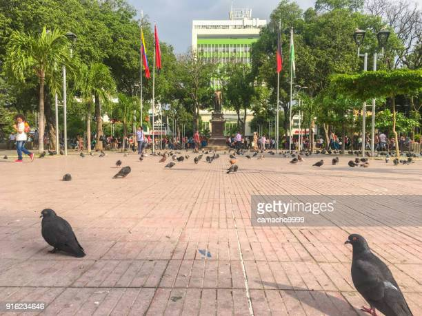 santander park in cucuta - cucuta stock pictures, royalty-free photos & images