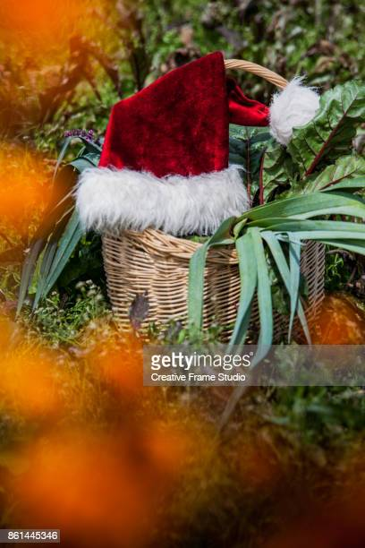 Santa's hat hanging on a wicker basket full of vegetables and flower
