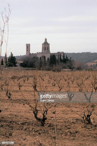 Santes Creus' s Monastery Santes Creus's Monastery from a field of vines 13th century with later elements in Cistercian style province of Tarragona