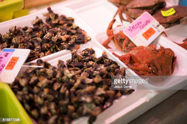 santoña fish market, cantabria, spain, europe - barnacle stock pictures, royalty-free photos & images