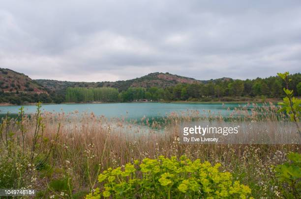 santos morcillo lagoon - lagoon stock pictures, royalty-free photos & images