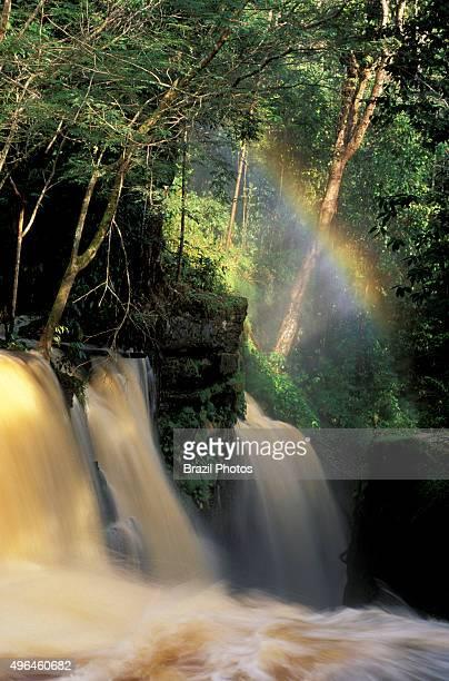 Santuario Falls in the municipality of Presidente Figueiredo Amazonas State Amazon rainforest Brazil