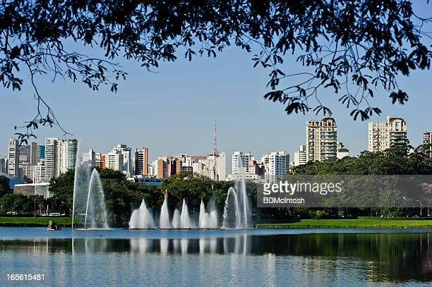 sao paulo, brazil, skyline - ibirapuera park stock pictures, royalty-free photos & images