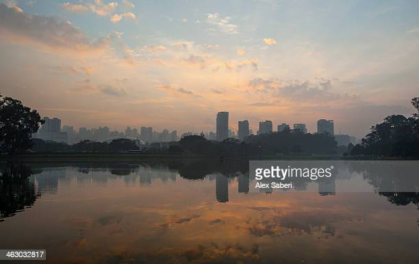 sao paulo cityscape reflected in the lake at ibirapuera park at sunrise. - alex saberi stock pictures, royalty-free photos & images