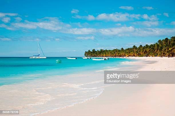 Saona Hispaniola Dominican Republic Caribbean
