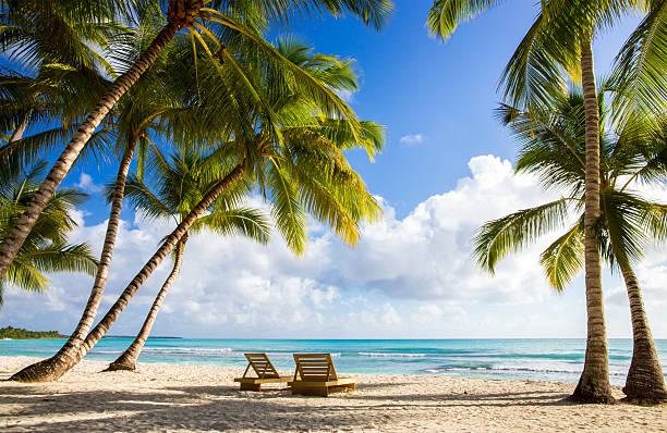 Vakantie toebehoren