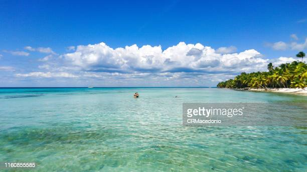 saona island - crmacedonio stock pictures, royalty-free photos & images