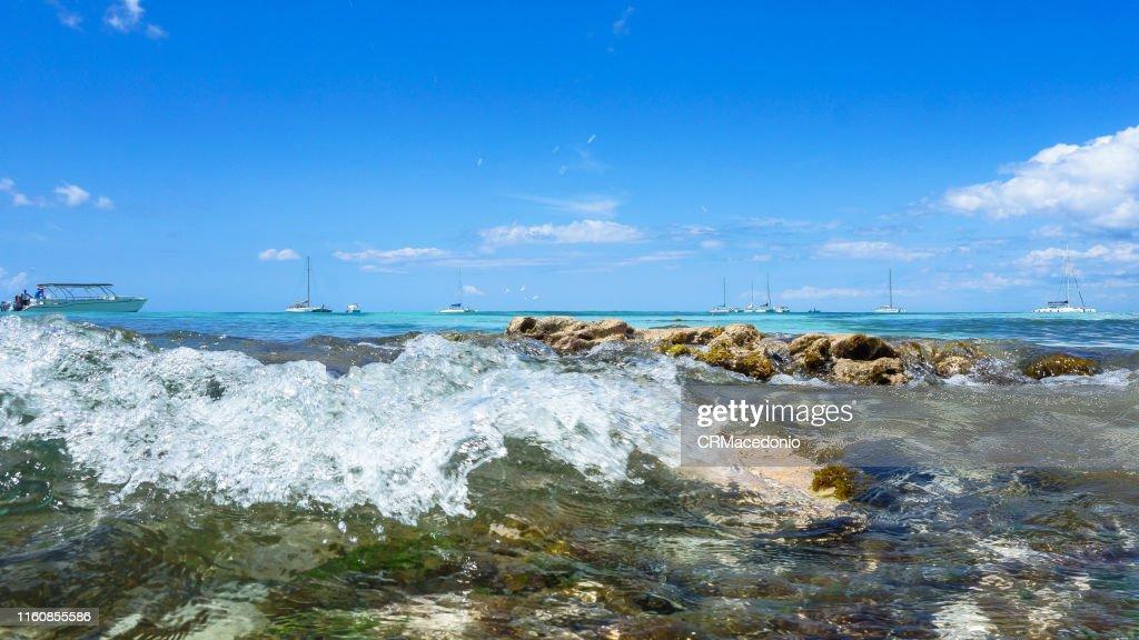 Saona Island : Stock Photo