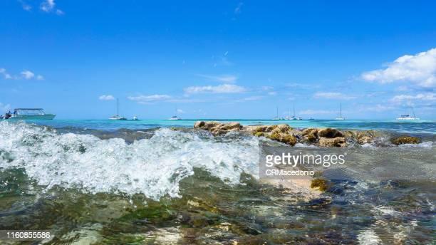 saona island - crmacedonio stock photos and pictures