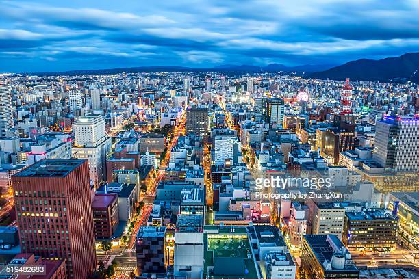 Sapporo city at twilight