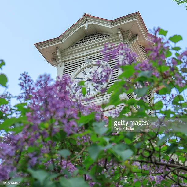Sapporo Clock Tower with Lilac