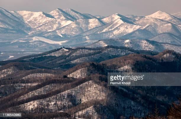 sapporo mountain view form mt. moiwa in hokkaido, japan, winter season - sapporo - fotografias e filmes do acervo