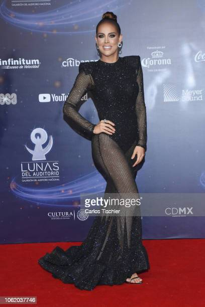 Sara Corrales poses for photos on the red carpet before the XVII Lunas del Auditorio award ceremony at Auditorio Nacional on October 31 2018 in...