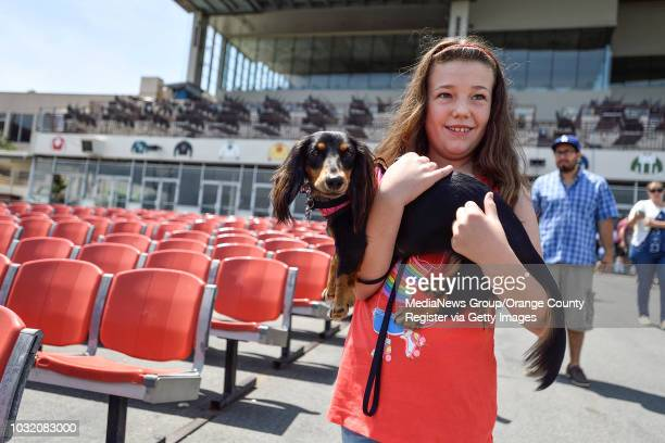 Sara Evans of Long Beach carries Bella in to Los Alamitos Race Course during practice for the 23rd Annual Wienerschnitzel Weiner Nationals in Cypress...